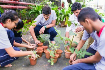 Activities Gardening